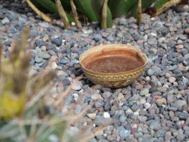 Kakaozeremonie